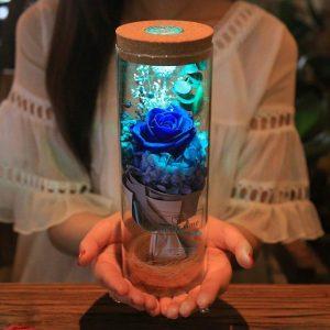 GalaxyRose™ Trandafirul Luminos cu LED in Lampa de Sticla - ShopGuru